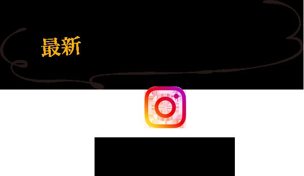 最新の振袖コーデをお届け Instagram