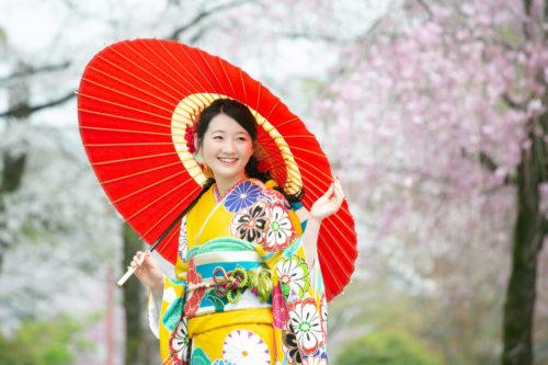 満開の桜と振袖撮影